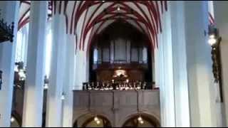 Lucis Creator Optime (Vyautus Miskinis) at Thomaskirche 7.21.13