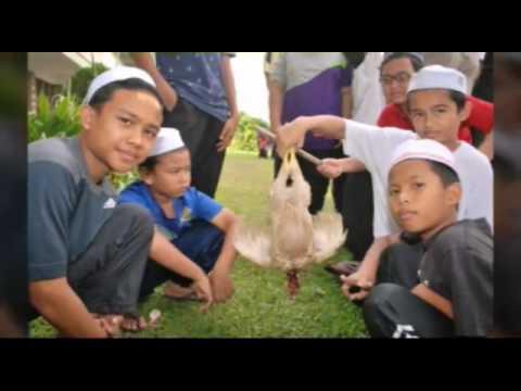 Kem Bahasa Arab Rendah Kolej Islam Darul Ulum, 2016