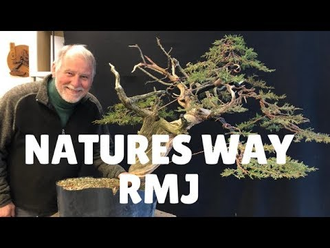 Natures Way Rmj Youtube