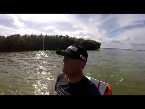 Sebastian Inlet Kayaking With Dolphins.Video Project HD 108060FPS