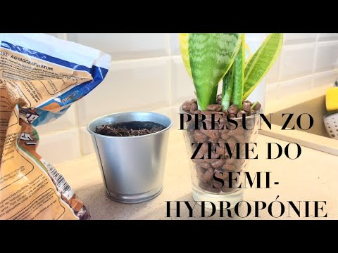 Download PRESUN ZO ZEME DO SEMIHYDROPÓNIE