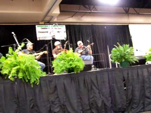 Possum Holler String Band - Yellow Rose of Texas