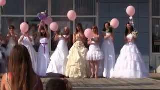 Чернянка. Сбежавшая невеста 2014.