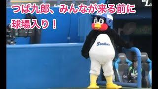 つば九郎、みんなが来る前に球場入り!