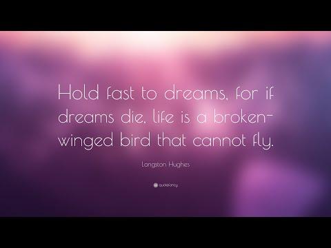 TOP 20 Langston Hughes Quotes