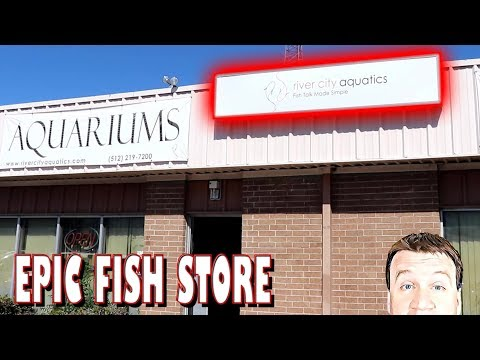 Epic Fish Store Tour - River City Aquatics - Austin Texas