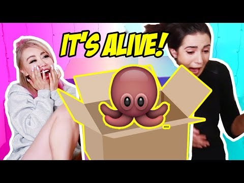 What's In The Box Challenge with Safiya Nygaard!