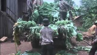 Khmer soldiers in Preah Vihear# 9