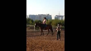 Уроки верховой езды. Моя дочь пераый раз села на лошадь