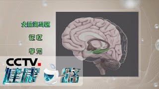 《健康之路》 20200606 运动闯关防痴呆| CCTV科教