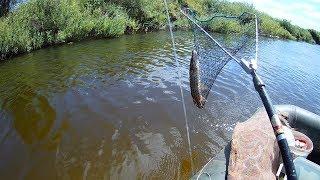 Рыбалка на реке Савала. Осенний сезон рыбалки