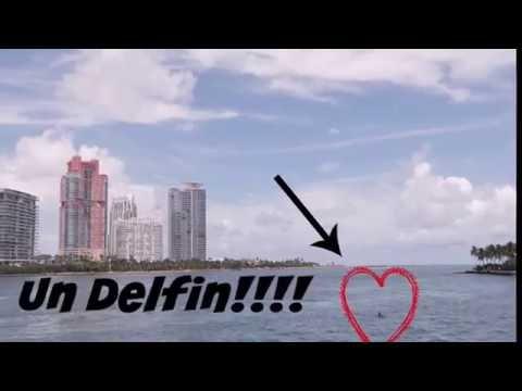 Tour Por La Isla De Los Famosos  Miami Beach FL (tour Parte 2)Vacaciones Miami ||  CraftyMaluz