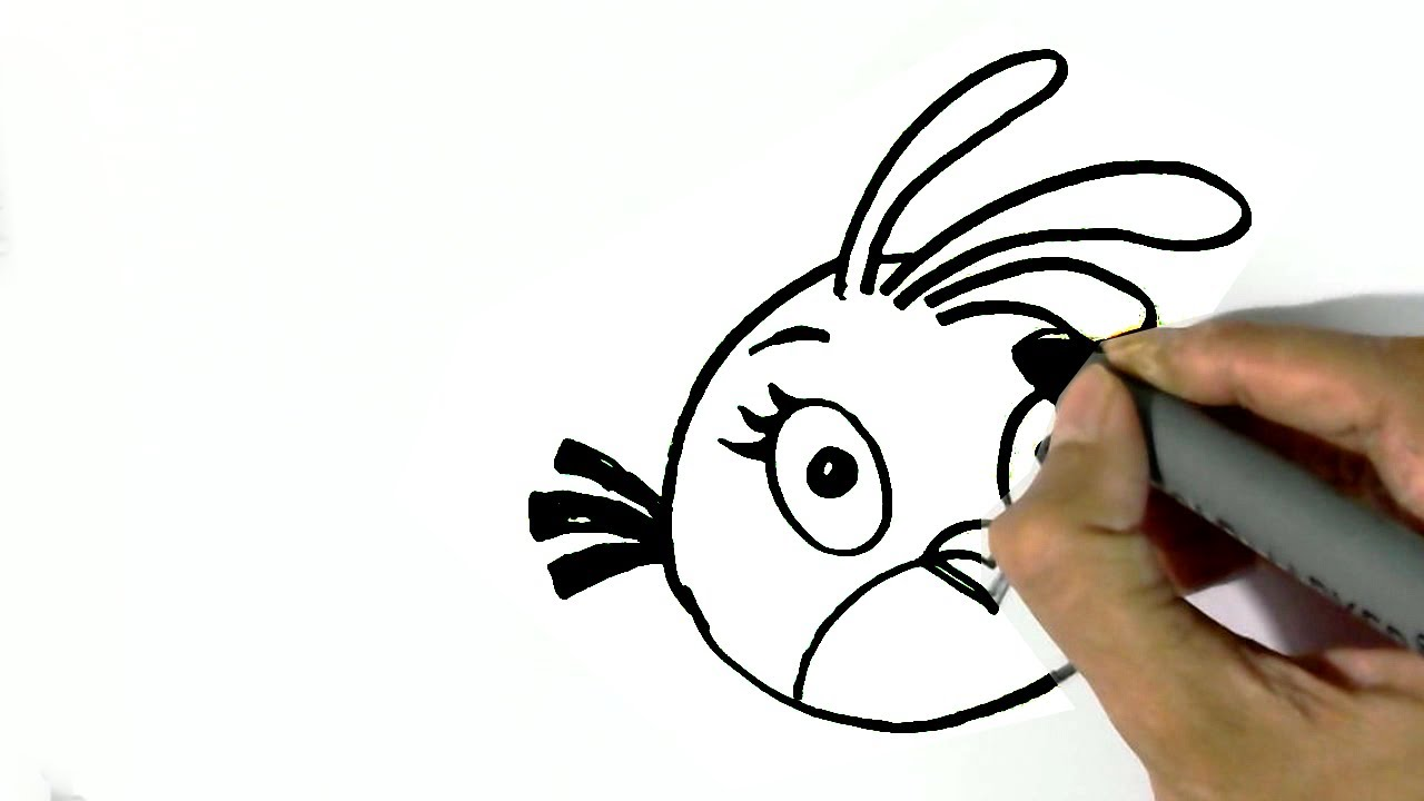 how to draw birds for beginners