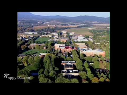 Oregon State University, INTO OSU