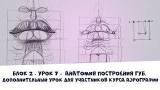 Анатомия построения губ -Дополнительный теоретический урок для участников курса Аэрографии онлайн