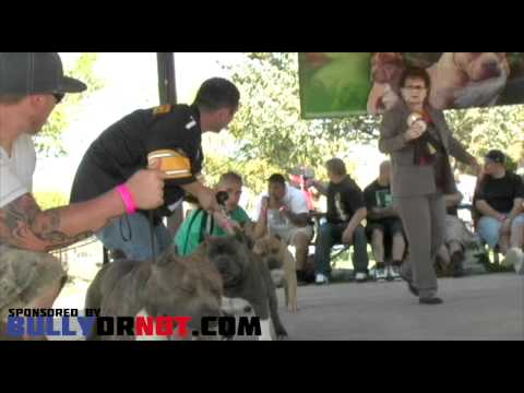 Oregon's Own Bully Bash 4 (2012)