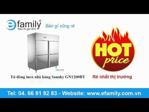Tủ đông inox nhà hàng Sanaky GN1200BT
