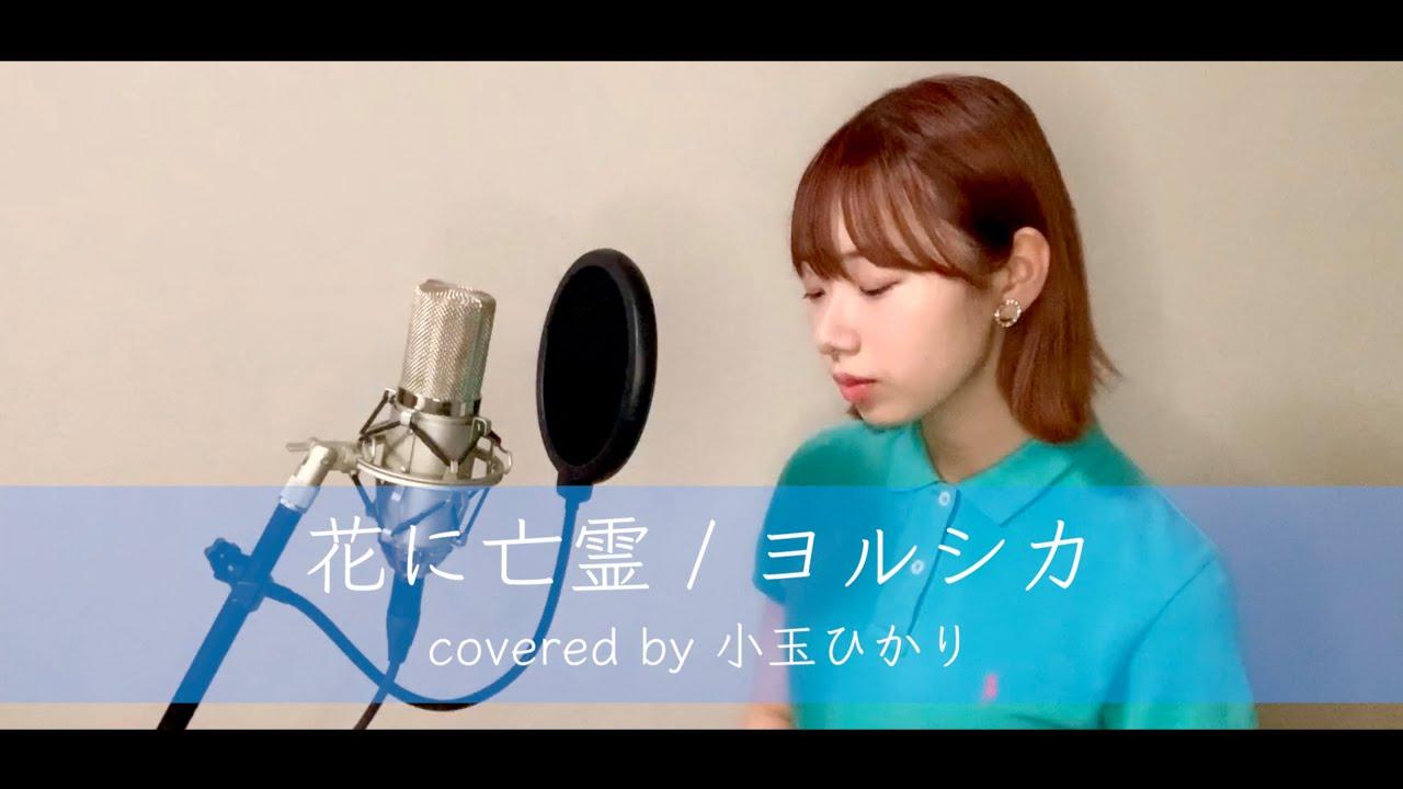 花に亡霊 / ヨルシカ(covered by 小玉ひかり)
