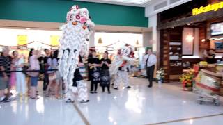 HAKATAYA Ramen Garden City: Grand Opening - Lion dance
