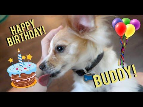 HAPPY BIRTHDAY BUDDY!