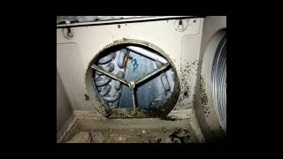 Mold in air vents? - A Plus Enviro-Services