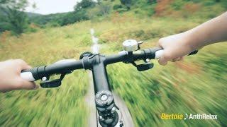 自転車に乗ることの楽しさと気持ちよさを、自然の中を走る家族の映像美...
