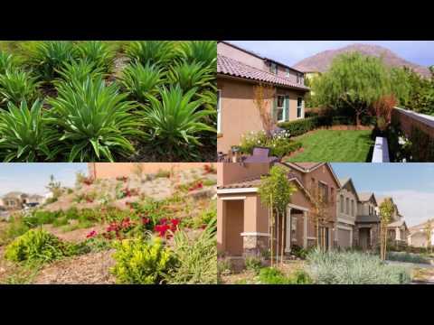 Spring Mountain Ranch Drone Video