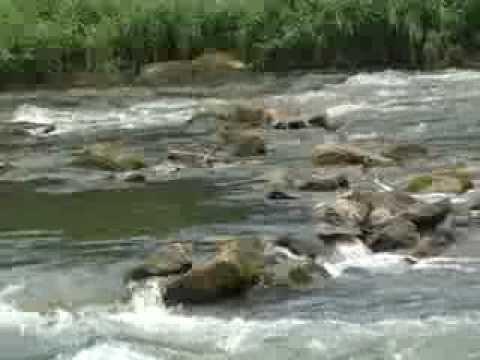 Missouri Groundwater: A Hidden Resource (2013)