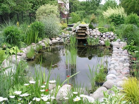 Inexpensive Landscaping Ideas outdoor landscaping ideas - inexpensive landscaping ideas - youtube