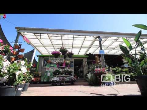 Plant Bug Nursery a Plant Nursery in Sydney offering Pot and Plants