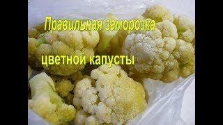 Как правильно заморозить цветную капусту. ЦВЕТНАЯ КАПУСТА ЗАГОТОВКА НА ЗИМУ. Заморозка овощей.