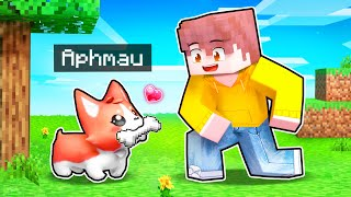 5 Minecraft Puppy PRANKS To Help Your FRIENDS!