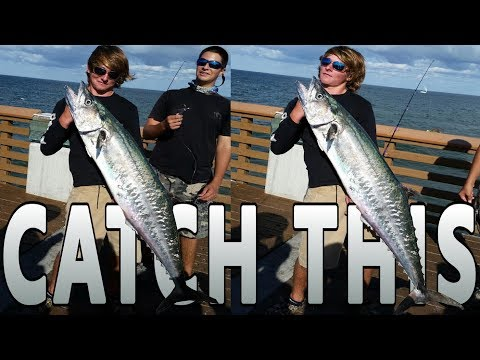 How To Catch GIANT FISH On The PIER!!!! (Trolley Rig Basics)