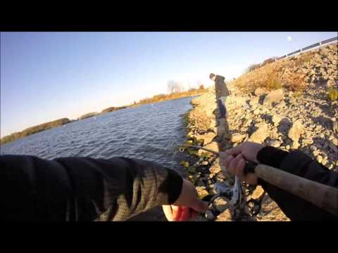 Central Illinois Angling - Crappie on Sangchris Lake