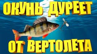 Эта снасть должна быть у каждого рыбака Окунь оценит по достоинству вертушку ВЕРТОЛЕТ