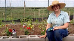 Summer Gardening: Two Smart Watering Tips for your Garden in Austin, Buda & Central Texas