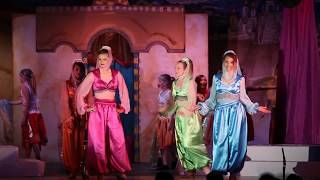 Disney's Aladdin JR (Iago cast)
