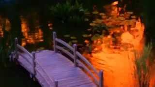 Beautiful Large Backyard Fish Pond With Bridge