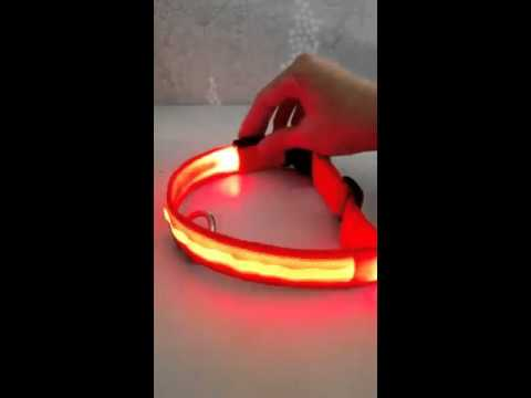 [達達3C] KP002-2.5 LED純色項圈 項圈 發光 三段閃光 寵物用品 寵物用具 電池款 2.5公分