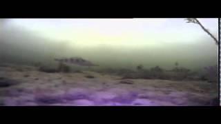 видео Видеокамера для рыбалки