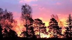 Marraskuinen auringonnousu Helsingissä