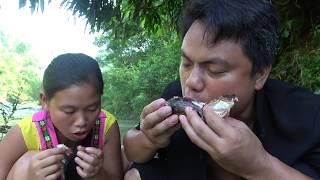 Primitive Technology Bamboo Traps Catch fish Carp In Dry Season - Cooking Skill and eating delicious
