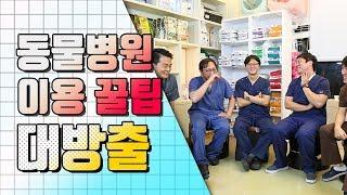 수의사가 알려주는 동물 병원가서 뽕 뽑는 방법! [크로스매거진 더펫]