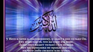 Воля Аллаха - 1 - Салим Абу Умар аль-Газзи