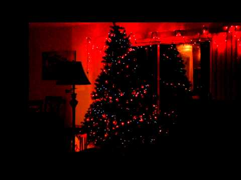 Christmas Tree Lights Up with Music
