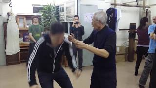 Focusing Wing Chun internal force to a small area - Chu Shong Tin Wing Chun