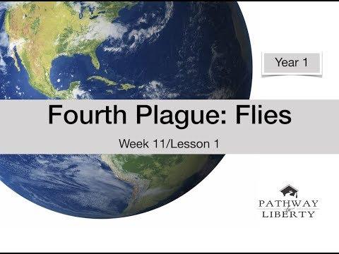 Fourth Plague: Flies: Week 11/Lesson 1