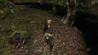 Dark Souls 2 - PC Gamer Tweaks - SweetFX, SGSSAA and HBAO+