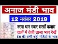 12 नवंबर 2019 अनाज मंडी ताजा भाव,  नरमा कपास ग्वार में तेजी, Paddy bhav today, mandy bhav today
