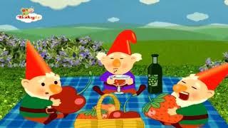 Cüceler - The Gnomes - Baby TV Türkçe